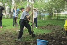 "Проект ""Детский огород"""